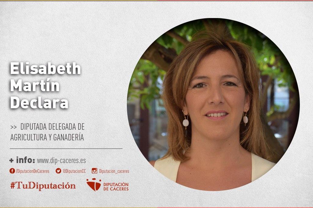Conoce a #TuDiputada por el Partido Judicial de Cáceres: Elisabeth Martín Declara