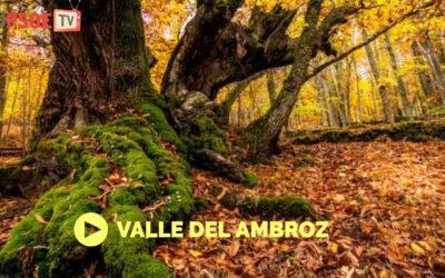 Hablamos con Vanesa Barbero sobre la Mancomunidad del Valle del Ambroz
