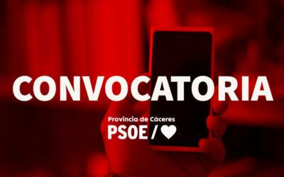 Convocatoria Asamblea elección de Delegadas y Delegados Izquierda Socialista
